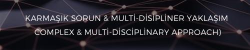 21. Yüzyıl Becerileri Karmaşık sorun & multi-disipliner yaklaşım