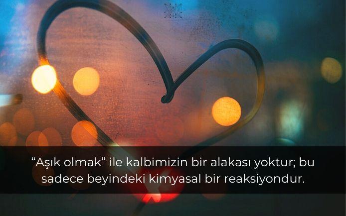 """""""Aşık olmak"""" ile kalbimizin bir alakası yoktur; bu sadece beyindeki kimyasal bir reaksiyondur."""